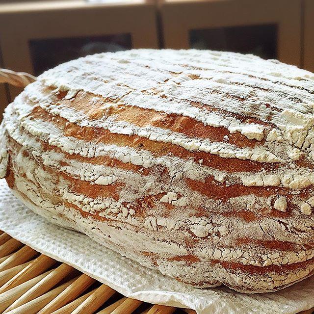 ポテト&コーンのカンパーニュこれも軽食にカットしてお出しする予定♪美味しく出来てるかな?!#実穂つなこ #bread #pain #パン #ぱん#カンパーニュ #ポテト #コーン #実験パン職人